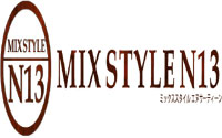 MIX STYLE N13